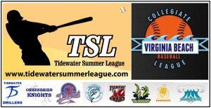 Interleague Play Logo