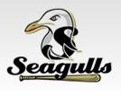 Sandbridge Seagulls 8, Lynnhaven Pelicans 7